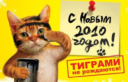 Тиграми не рождаются;)