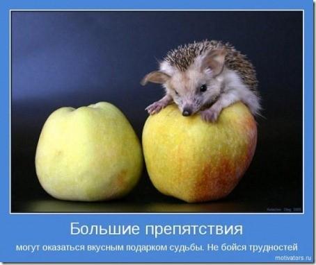 Лидерами не рождаются;)